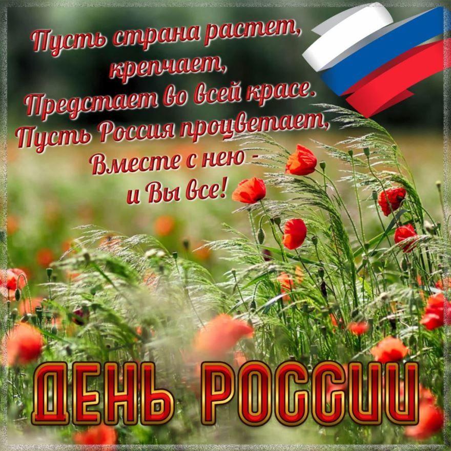 СМС картинки, с днем России