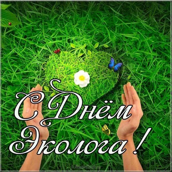 5 июня день эколога, открытки