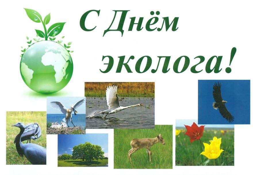 Открытка с днем эколога, скачать бесплатно