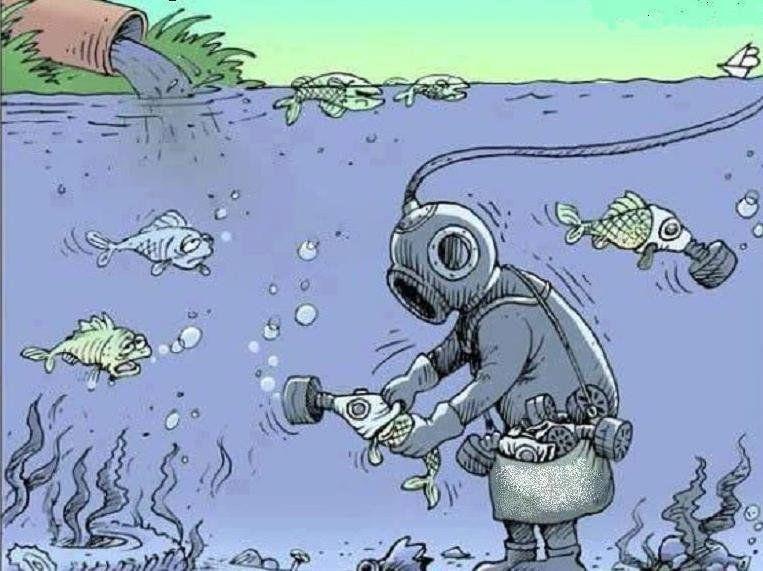 Смешные поздравления с днем эколога, бесплатно
