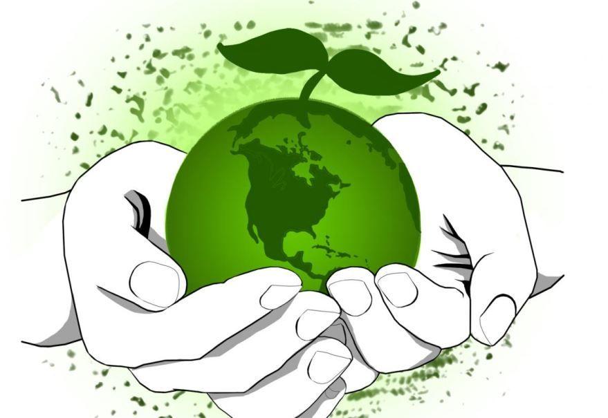 Прикольная картинка с днем эколога