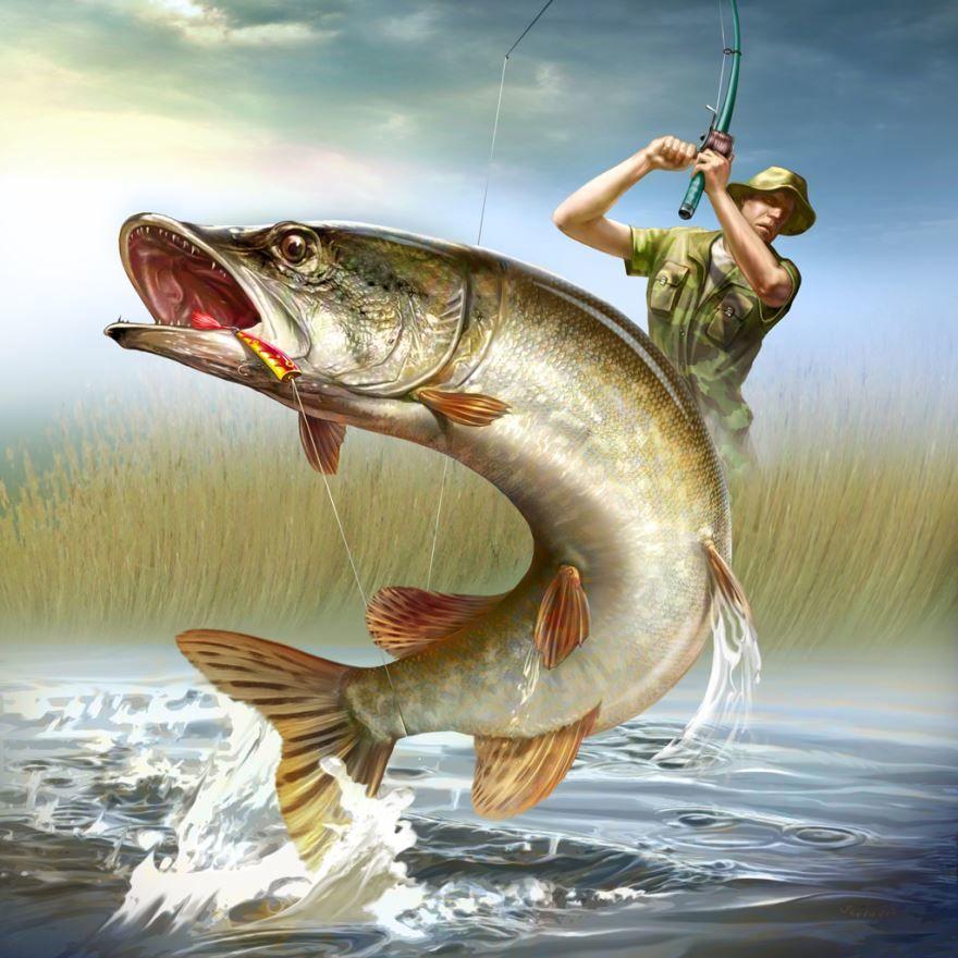 Картинка день рыбака, прикольная