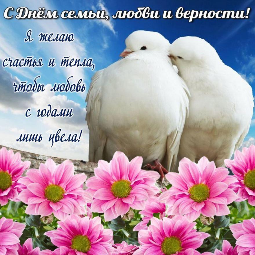 Красивая, красочная открытка с днем семьи, любви и верности