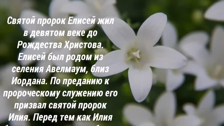 27 июня праздник Православный - день памяти Святого пророка Елисея