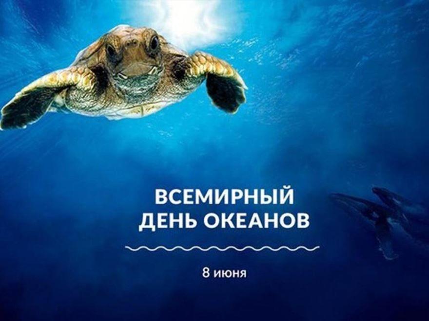 Красивые, прикольные картинки - 8 июня, Всемирный день океанов