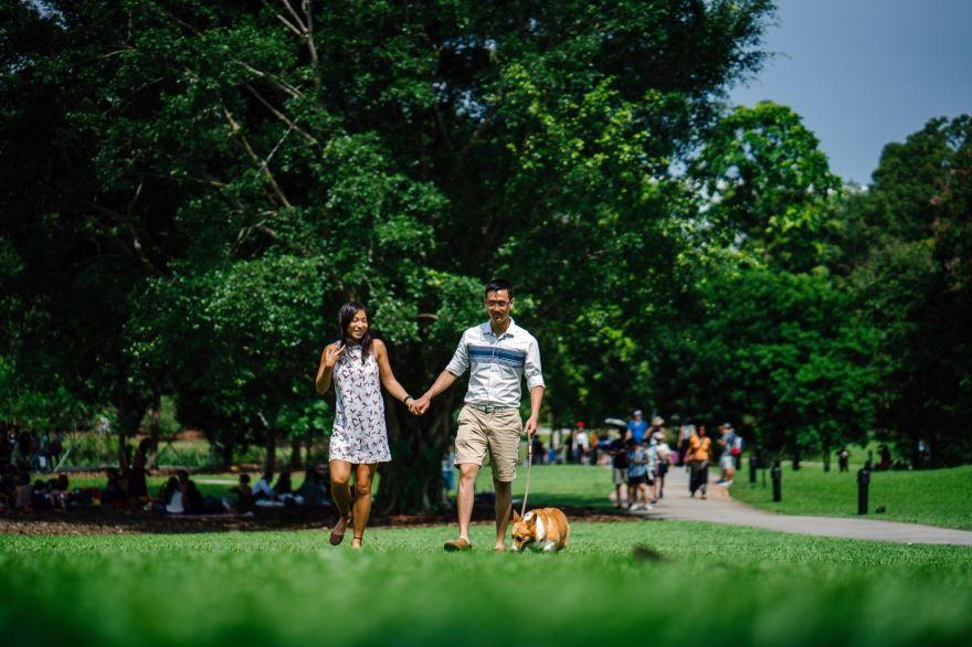 19 июня праздники в России - Международный день прогулок