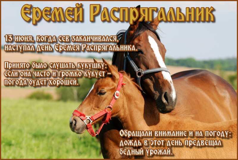 Церковный праздник 13 июня в России - Еремей Распрягальник