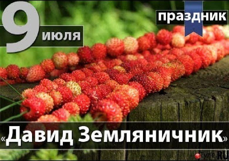 Православные праздники в июле 9 июля праздник - Давид земляничник