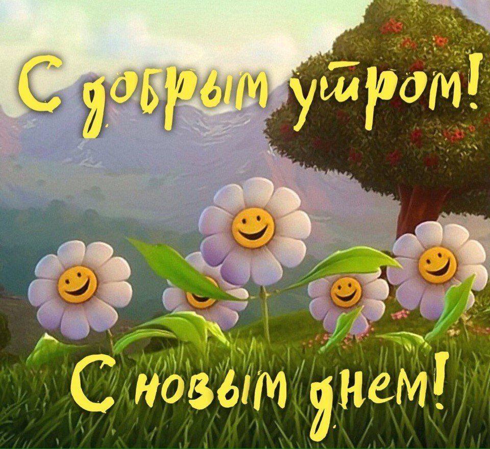 Доброе утро прекрасного дня хорошего настроения картинки