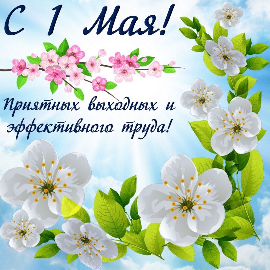 С 1 мая коллегам открытки поздравления красивые