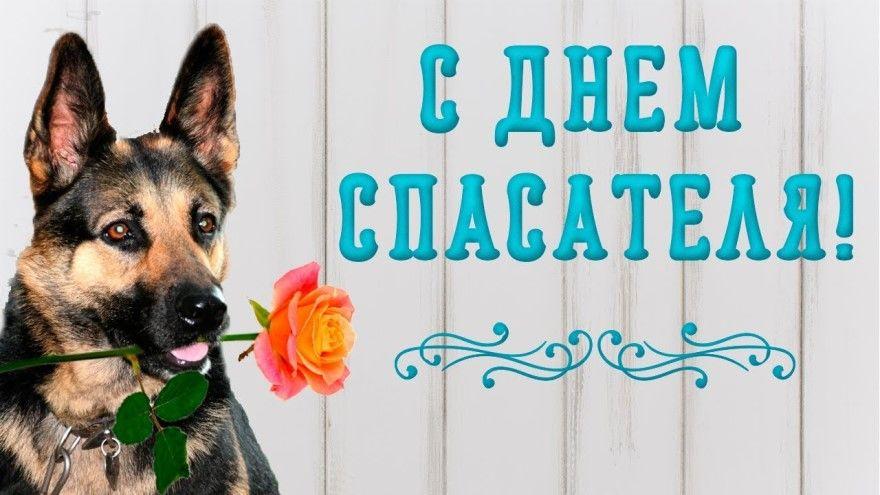 День спасателя открытки картинки России поздравления