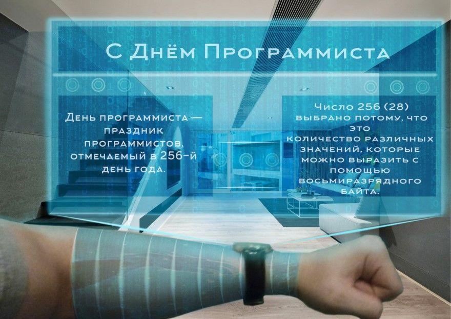 День программиста в России когда отмечается