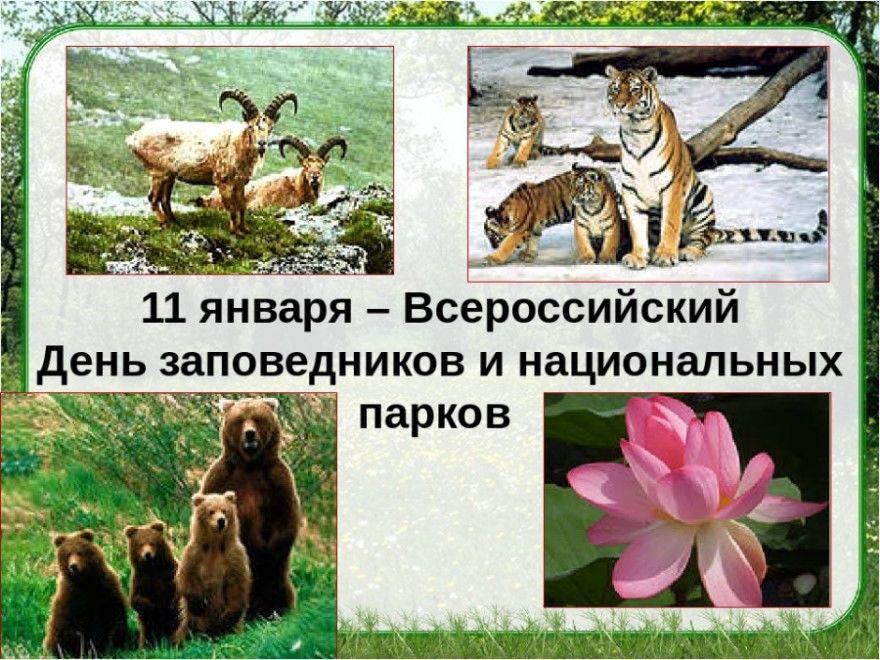 День заповедников национальных парков картинки фото
